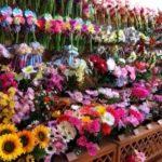 100円ショップダイソーの造花がすごい!インテリアやラッピングにも